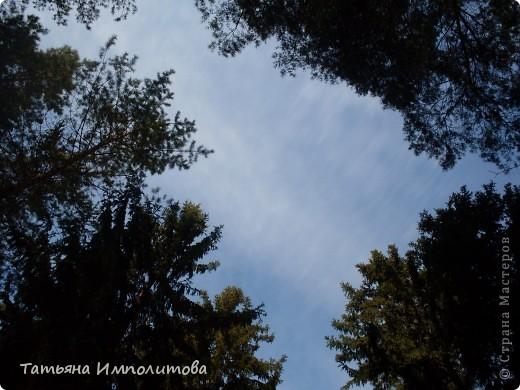 Какое небо голубое... фото 10