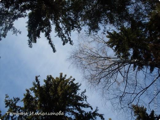 Какое небо голубое... фото 12