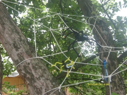 Не одним детским садом я живу, у меня есть еще любимая дача, вот такие огородники там живут(идея из интернета) фото 3