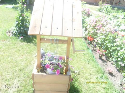 Не одним детским садом я живу, у меня есть еще любимая дача, вот такие огородники там живут(идея из интернета) фото 4