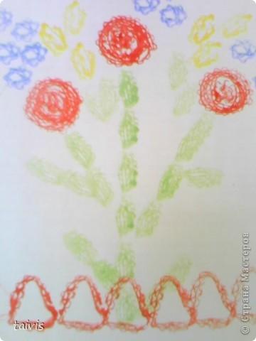 Кактусы расцвели. фото 10