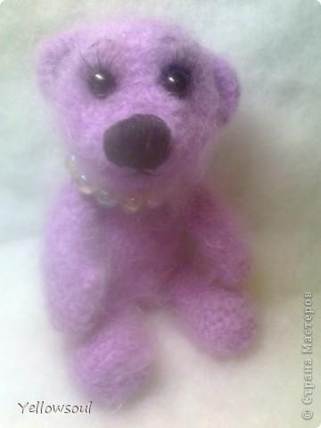 Медведица фото 1