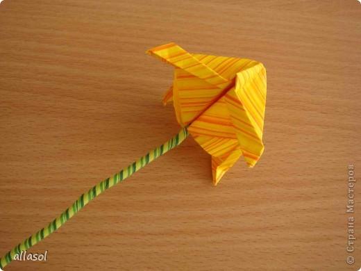 Увидела тюльпаны у Эрны  http://stranamasterov.ru/node/167678 . Очень захотелось сделать. Мои тюльпаны тоже гиганты. Размер квадрата 21х21см. Сделала их из подарочной бумаги. Хочу поделиться некоторыми дополнениями. фото 4