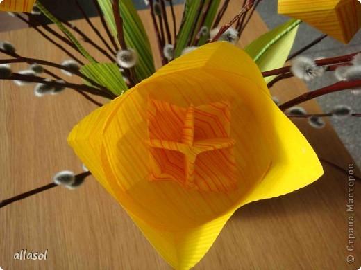 Увидела тюльпаны у Эрны  http://stranamasterov.ru/node/167678 . Очень захотелось сделать. Мои тюльпаны тоже гиганты. Размер квадрата 21х21см. Сделала их из подарочной бумаги. Хочу поделиться некоторыми дополнениями. фото 6