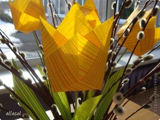 Увидела тюльпаны у Эрны  http://stranamasterov.ru/node/167678 . Очень захотелось сделать. Мои тюльпаны тоже гиганты. Размер квадрата 21х21см. Сделала их из подарочной бумаги. Хочу поделиться некоторыми дополнениями. фото 7