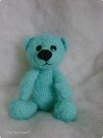 Медведица фото 3