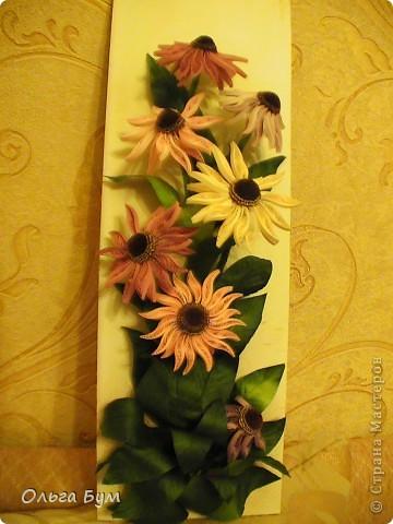 Эхинацеи! Люблю этот цветок в квиллинге - радостный и простой. фото 2