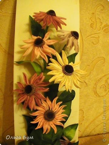 Эхинацеи! Люблю этот цветок в квиллинге - радостный и простой. фото 6