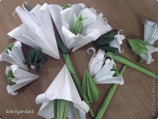 Рамка, цветы, картина фото 2