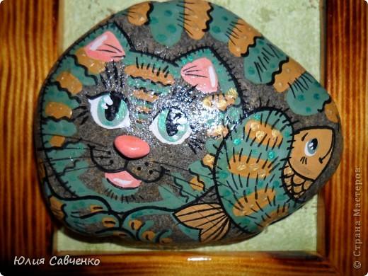 Морские котики 2 фото 5