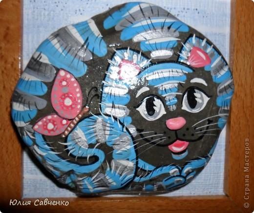 Морские котики 2 фото 10