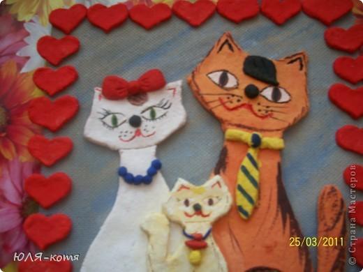 вот такие кошки фото 2