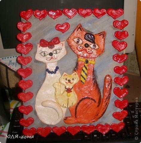 вот такие кошки фото 3
