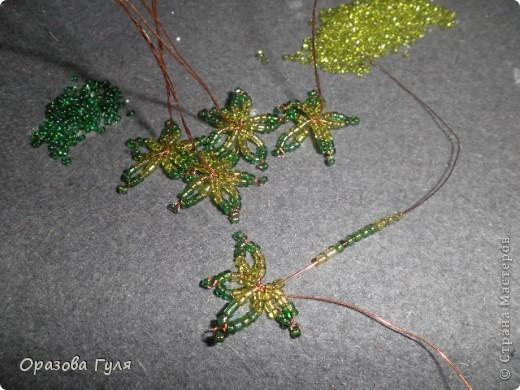 Фиалки плетистые, назпадающие... А почему бы и нет? фото 5