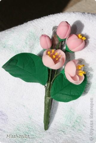 """Это заколка-крокодильчик """"Яблоневый цвет"""". Сейчас вижу, что цветочков маловато сделала, надо бы еще хоть парочку добавить. фото 1"""