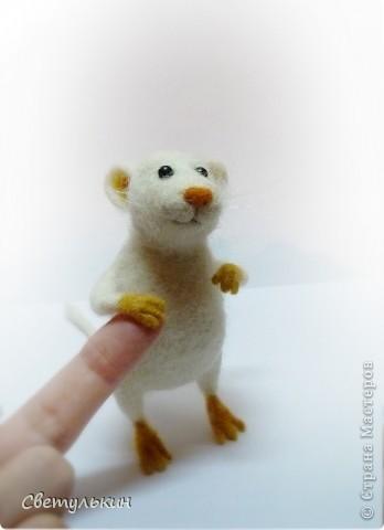Мышки... фото 4