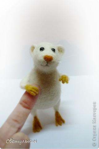 Мышки... фото 5