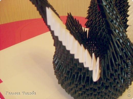 Черный принц модульное оригами