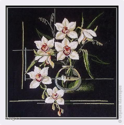 Вышивка крестом Орхидеи от