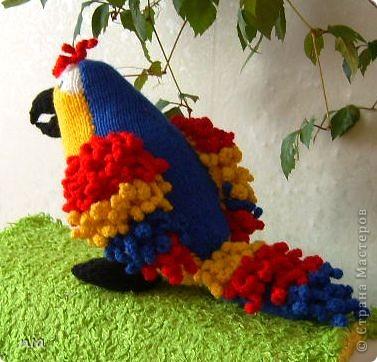 схема вязания попугая корелла крючком