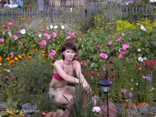 Моя любимая дача 2009 год ( продолжение следует) фото 13