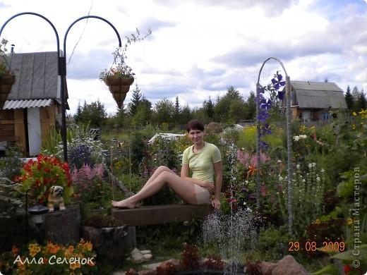 Моя любимая дача 2009 год ( продолжение следует) фото 15