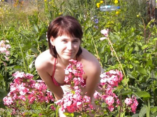 Моя любимая дача 2009 год ( продолжение следует) фото 16