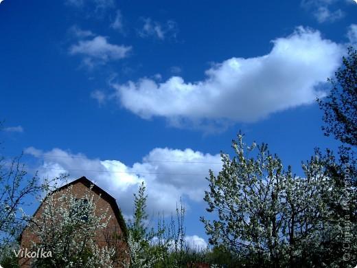 """Люблю смотреть на облака! Всегда засматриваюсь на них, не думая о том, что так можно и упасть :-))! И если есть возможность - фотографирую. А возможность есть в основном на даче. Приглашаю всех, небезразличных к """"небесным странникам"""", на мою страничку! фото 3"""