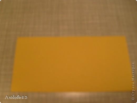"""Рамка из плотной бумаги для черчения. Фон - оранжевый картон, поверх которого накрахмаленные нити. Композиция из бабочек и листьев из бумаги и трёх декоративных прозрачных камешков - """"куколки"""" будущих бабочек. фото 2"""