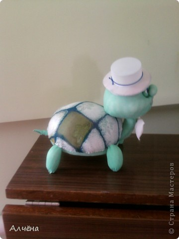Черепах Стёпка фото 4