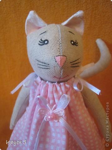 Кошечка Муся фото 3