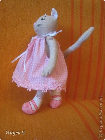 Кошечка Муся фото 7