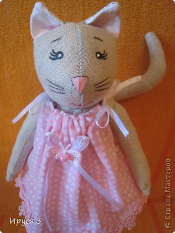 Кошечка Муся фото 8