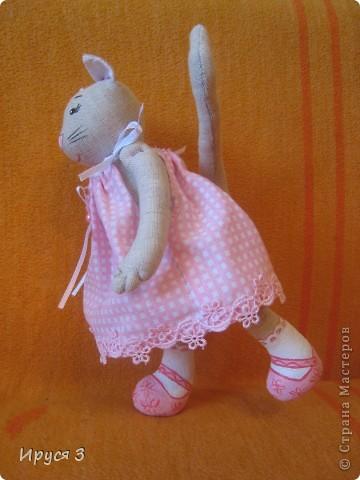 Кошечка Муся фото 11
