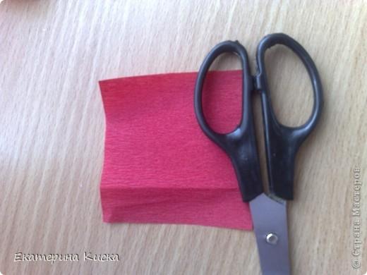 это мои розочки которые сделаны из гофр.бумаги,клея ПВА-М,понадобятся еще ножницы,и обычная глубокая ложка!  фото 2