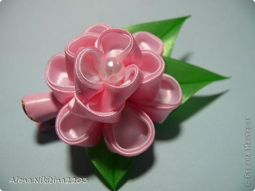 розовое чудо для маленькой вреднульки фото 1