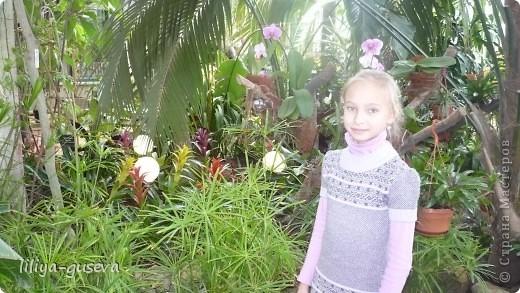 А орхидеи не пахнут. фото 3