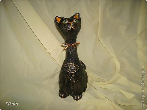 Кошка,моя первая бутылка фото 1