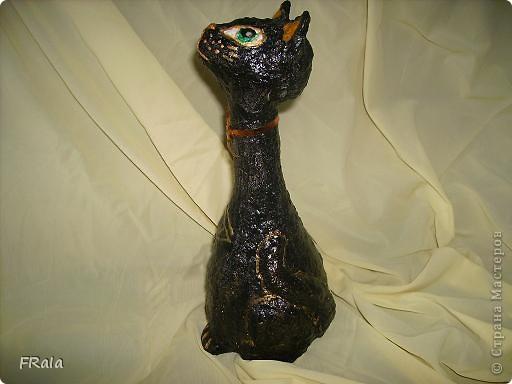 Кошка,моя первая бутылка фото 2