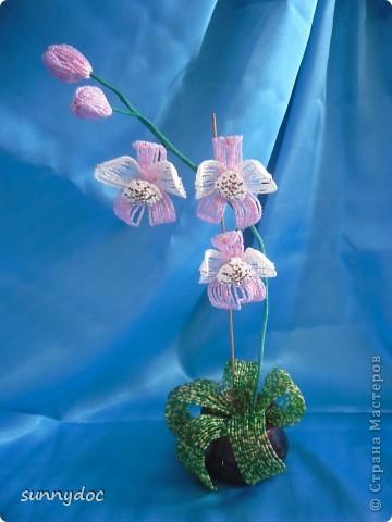 Давно хотела сделать орхидею, и вот что получилось.... фото 1