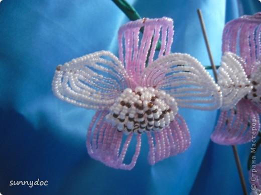 Давно хотела сделать орхидею, и вот что получилось.... фото 2