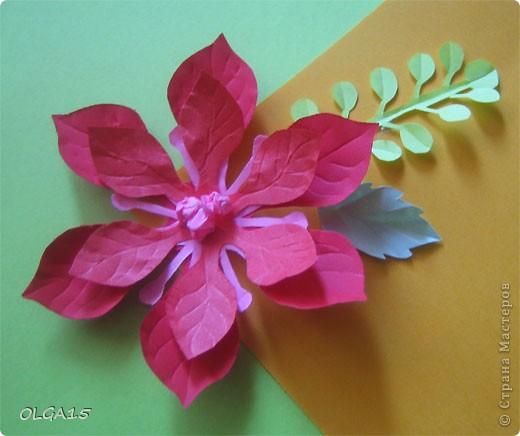 Фон выполнен на акварельной бумаге, цветы тоже подкрашены акварелью. фото 21