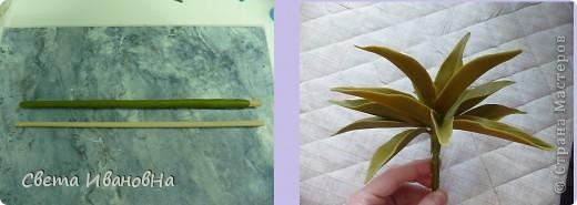 Вот рябчики я люблю, чего не могу сказать об орхидее! Поэтому лепила их с огромным удовольствием! Не совершенство конечно, зато есть к чему стремиться. фото 14