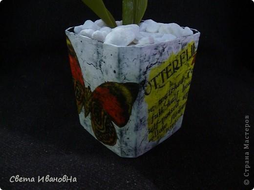 Вот рябчики я люблю, чего не могу сказать об орхидее! Поэтому лепила их с огромным удовольствием! Не совершенство конечно, зато есть к чему стремиться. фото 16