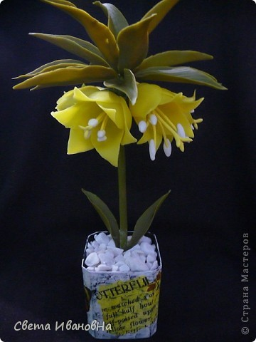 Вот рябчики я люблю, чего не могу сказать об орхидее! Поэтому лепила их с огромным удовольствием! Не совершенство конечно, зато есть к чему стремиться. фото 17