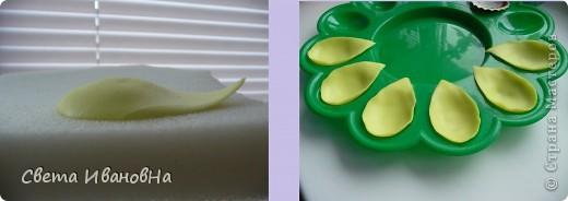 Вот рябчики я люблю, чего не могу сказать об орхидее! Поэтому лепила их с огромным удовольствием! Не совершенство конечно, зато есть к чему стремиться. фото 5