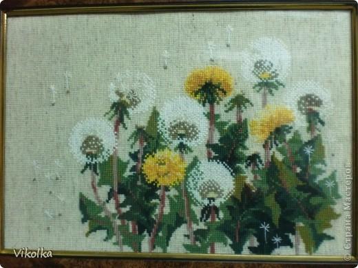 """Не знаю, почему, но цветы вышиваю редко. Это, практически, и все работы на цветочную тему. Картины  вышиты по наборам фирмы """"Риолис"""". """"Подсолнухи"""", нитки: шерсть, цветов: 15, размер: 40*40 см.     фото 4"""