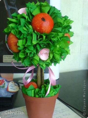 Яблонька для племянницы моей коллеги) фото 1