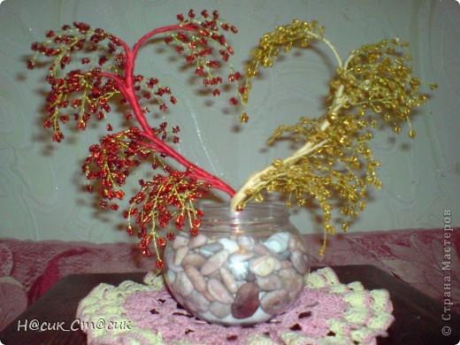 деревце влюблённых=)