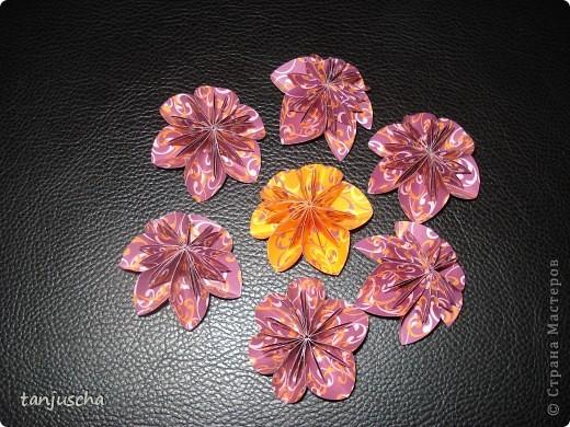 Хочу показать вам цветочки которые сделала на выходных. Купила книжку . Решила попробовать и так понравилась мне их делать что получилось так много. Моё мнение цветов много не бывает.  фото 6